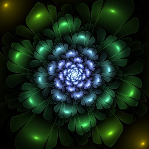 Цветы Apophysis